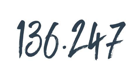fynup Erfolgsformel 136.247