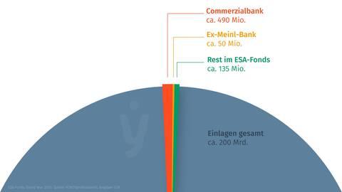 fynup zeigt, wie viel Geld wirklich im Einlagensicherungs-Fonds der ESA liegt?